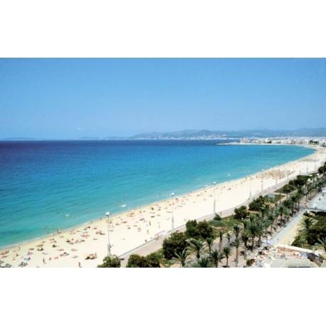 Nº12 Playa de Palma