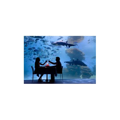 Nº8 Es Trenc/Aquarium